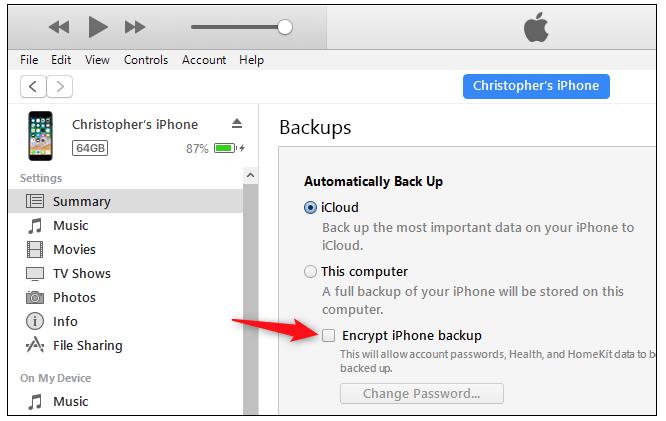 copia de seguridad en iPhone o iPad